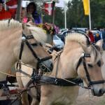 Gratis hestevognskørsel Lemvig marked og dyrskue